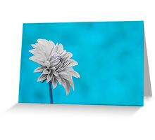 Flowers - Snowdrop Greeting Card