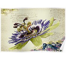 The Passion Flower.  Poster