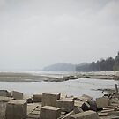 the longest beach of the world (coxes bazar)2 by limon