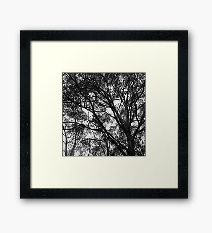 Take a Minute Just to Breathe Framed Print