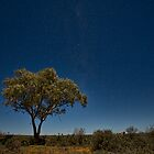 Night Views - Silverton, NSW by Malcolm Katon