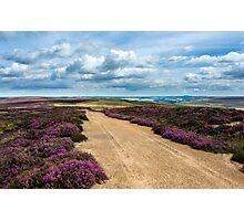 Durham Moors Photographic Print