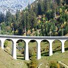 Swiss railway viaduct by Arie Koene