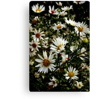 Freedom of Wildflowers Canvas Print