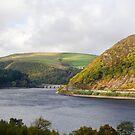 Elan valley reservoir  by Steve Shand