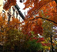 St. Marks Ave by ericalipper