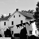Amish wash day by Penny Rinker