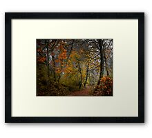 Enter The Fog ~ Fall Colors ~ Framed Print
