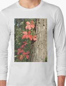Autumn's Hint Long Sleeve T-Shirt