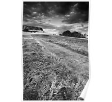 Up Windy Hill BW Poster