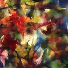 Autumn Leaves Abstract by Teresa Pople