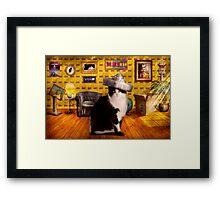 Animal - The Cat Framed Print