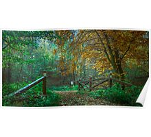 Wooden bridge in autumn colours Poster