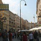 Street near Saint Stephen's church, Vienna by Ilan Cohen