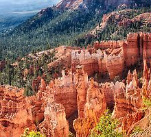 Bryce Canyon Utah Views 24 by Bo Insogna