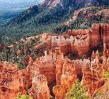 Bryce Canyon Utah Views 24 by Bo Insogna