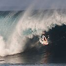 The Art Of Surfing In Hawaii 26 by Alex Preiss