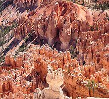 Bryce Canyon Utah Views 82 by Bo Insogna