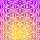Flower of Life - Purple & Gold by Steven Nicolaides