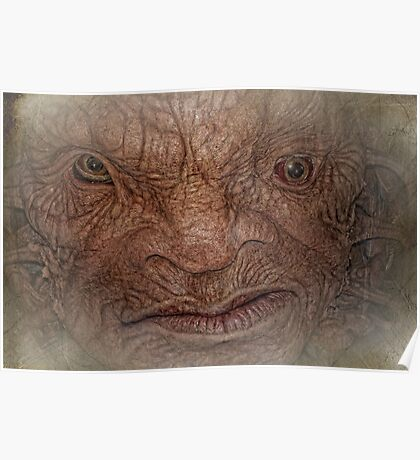The Face of Boe  Poster