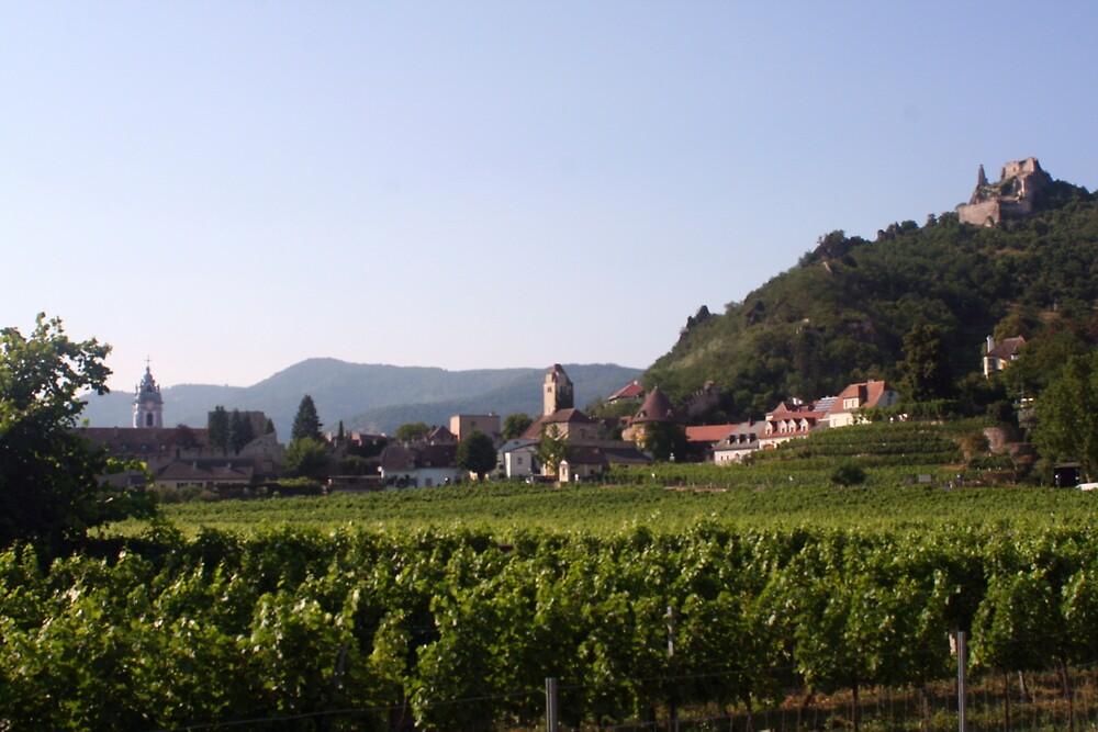 Durnstein and Kuenringerburg castle, near the Danube, Wachau Austria by Ilan Cohen