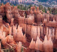 Bryce Canyon Utah Views 92 by Bo Insogna