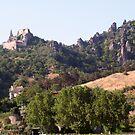 Kuenringerburg castle in Durnstein, near the Danube, Wachau Austria by Ilan Cohen