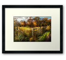 Country - Autumn years  Framed Print