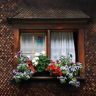 Window with flowers by Peter Dickinson