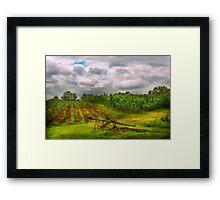 Farm - Organic farming  Framed Print