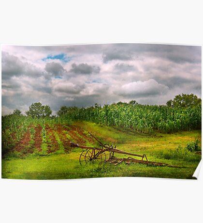 Farm - Organic farming  Poster