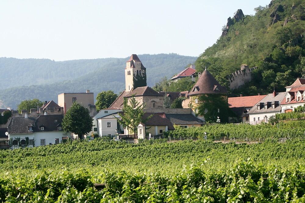Durnstein near the Danube, Wachau Austria by Ilan Cohen