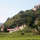 Kuenringerburg castle and Durnstein, near the Danube, Wachau Austria by Ilan Cohen