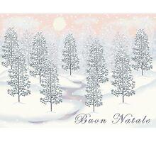 Snowy Day Winter Scene - Buon Natale Christmas Card Photographic Print