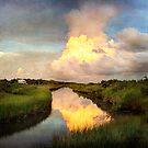 Bayou Storm Reflections by Jonicool