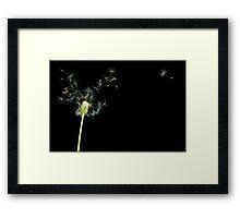 Flower - Dandelion - Gesundheit  Framed Print