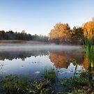 Morning Pond by Jonicool