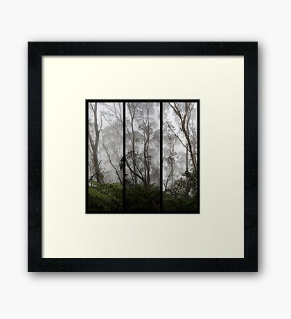 Forest - Triptych Framed Print