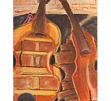 Bass Groove Photographic Print