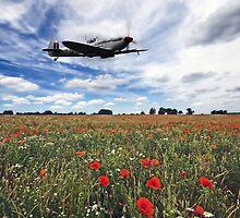Remembrance by Nigel Bangert