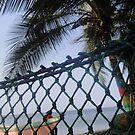 Hammock on Beach by TravelGrl