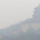 China Palace by TravelGrl