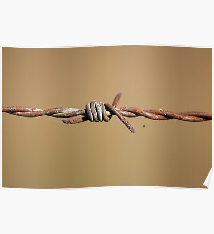 Rustic Barb Wire Poster