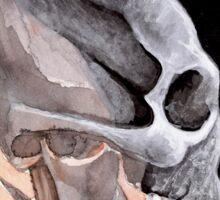 Ancient Elongated Skull Watercolor Sticker