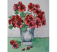 Red pelargoniums 2012Ⓒ Oil on canvas Photographic Print