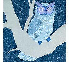 once upon a time owl Photographic Print