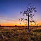 Western Australia by Matt Mason