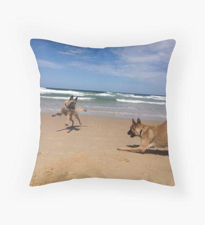 Belgian Laekenois & Malinois beach games Throw Pillow