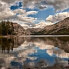 Afternoon at Tenaya  by Cat Connor