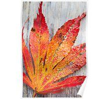 Autumn Fire Poster